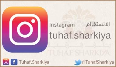 صفحة الانستغرام